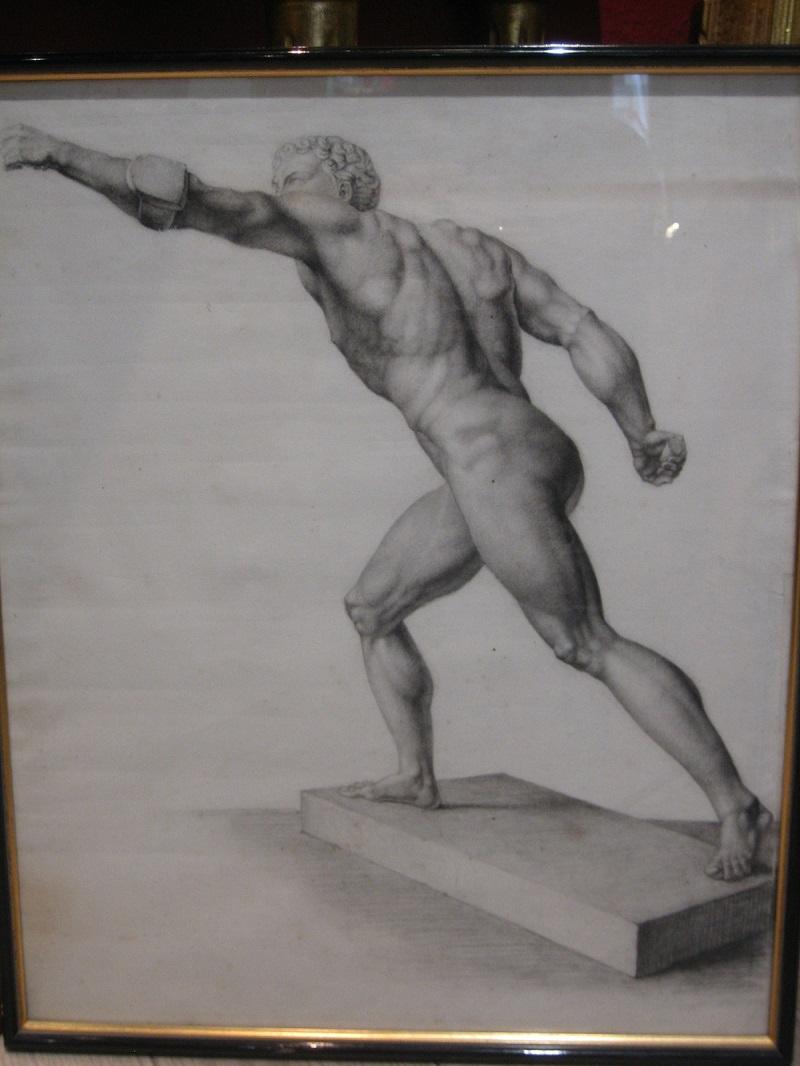 Grec nu dessin academique